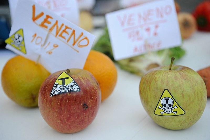 Instalação de protesto contra alimentos com agrotóxicos e transgênicos no Rio de Janeiro, em 2014