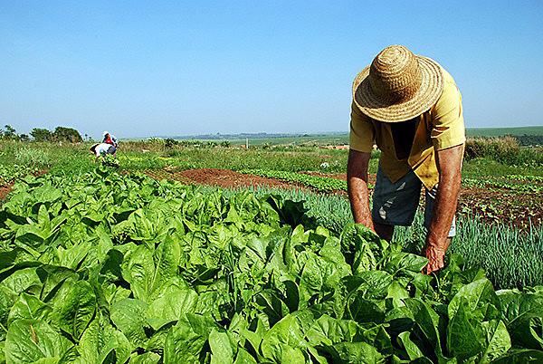 Memorandos do Incra que revogaram demarcação de terras foram publicados na primeira semana do ano